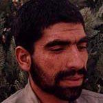 عباس پیکری