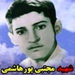 مجتبی پورهاشمی