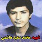 شهید محمدسعید هاشمی