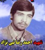 شهید احمدرضا نبی نژاد